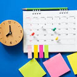 schedule-pinup_300x300